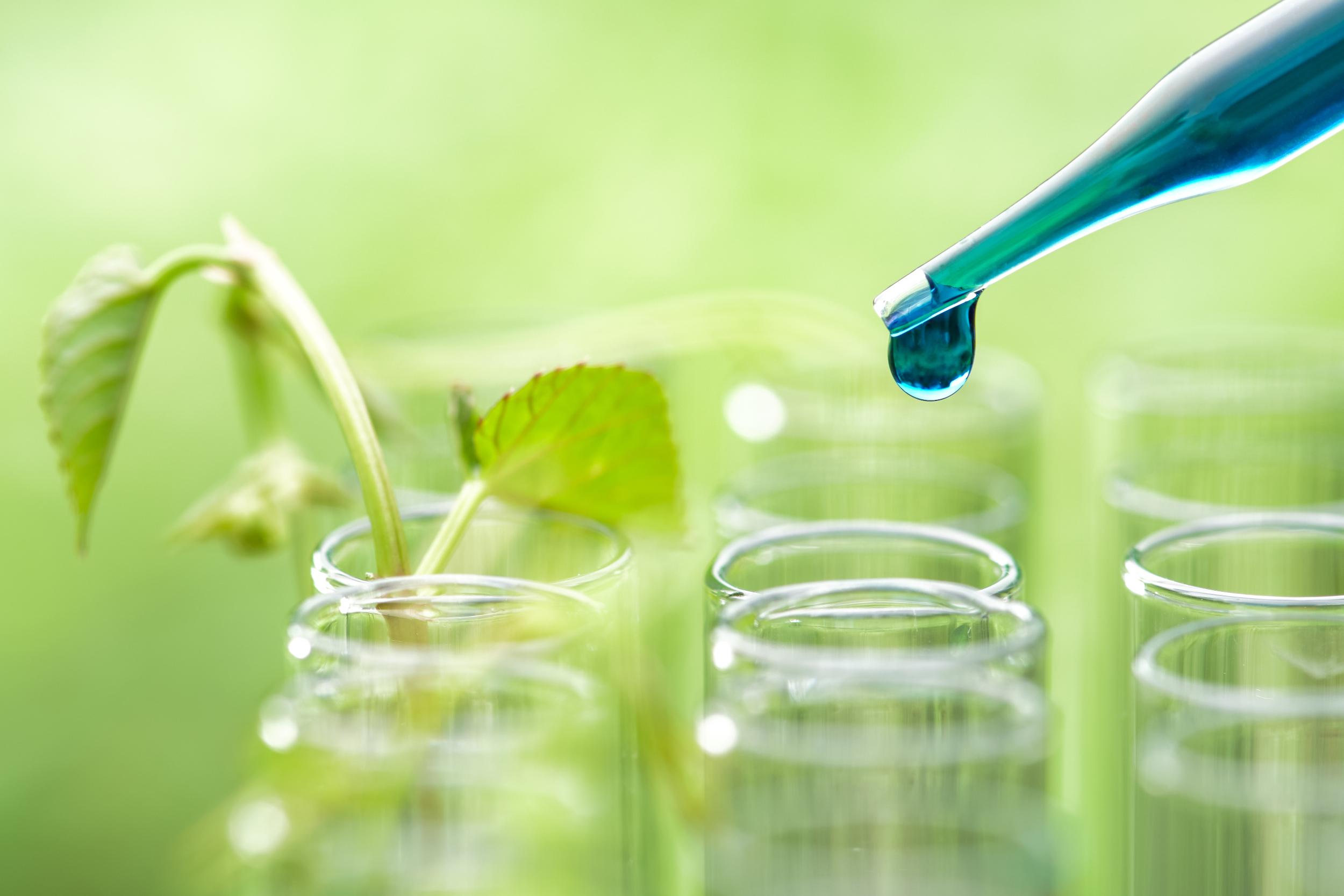 M7R Biotechnologie